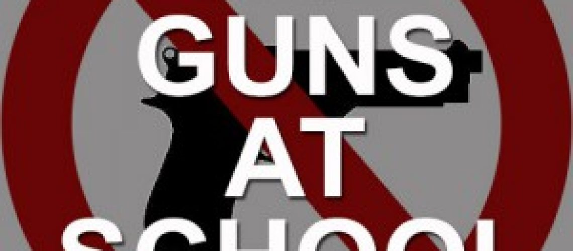 ON GUN SAFETY: NH is one of only eight states that either allow the concealed carry of firearms (by permit holders) at K – 12 schools or have no relevant law prohibiting it.      Law enforcement officers and vetted campus security employees are the only personnel that should be allowed to bring weapons on school grounds!